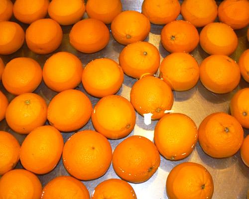 rincage des oranges