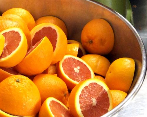 oranges bio confites chocolat noir